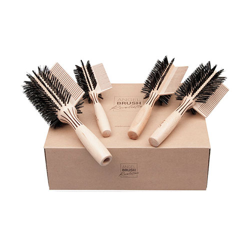 ANGEL BRUSH REVOLUTION