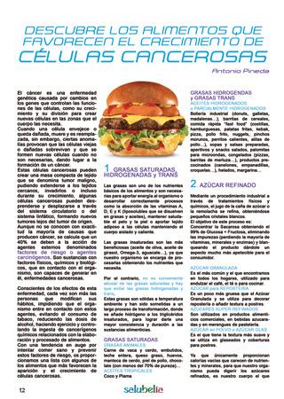 Salubelia Magazine 2017