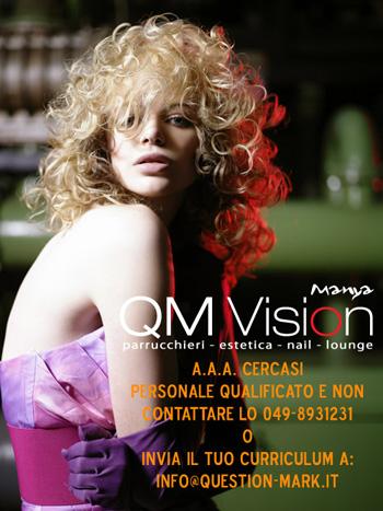 QM VISION