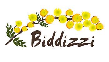 biddizzi_logo