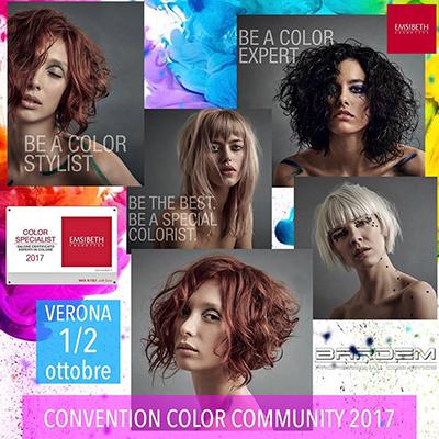 EMSIBETH Color Community 2017