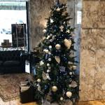 Natale Francesco Stile