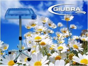 giubra