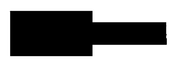 logo-di-biase-hair