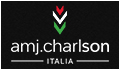 AMJ CHARLSON - for hairdressers, manufacturing professional hair care products, hair dye, aesthetics