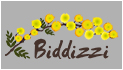 Biddizzi - Wholesaler of hairdressers Biddizzi | Training courses for hairdressers Sale and rental of machinery for aesthetics